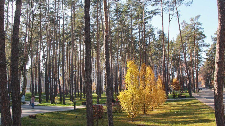 """Осенний фоторепортаж с парка """"Центральный"""""""